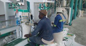 Maize Mill Equipment (2)